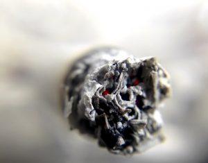 Rookgeur